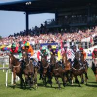 down_royal_racecourse_web